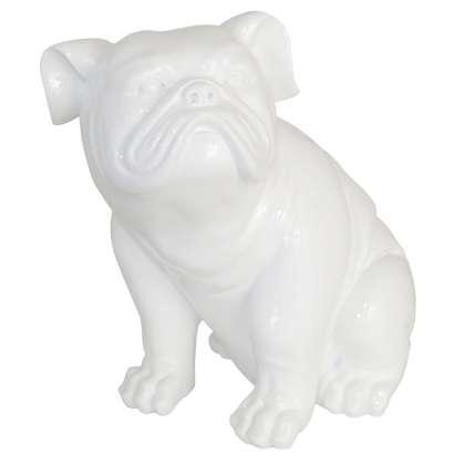 Bull Dog - Accent